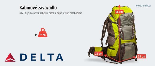 Příruční / kabinová / palubní zavazadla u Delta Air Lines 2016