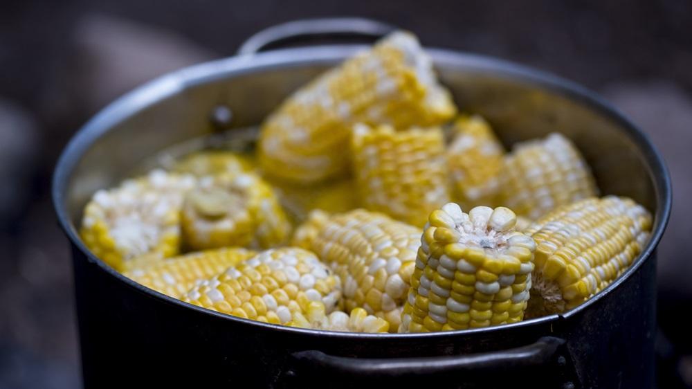 3 tipy, jak uvařit kukuřici jako šéfkuchař