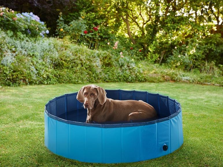 Bazén pro psy Zoofari