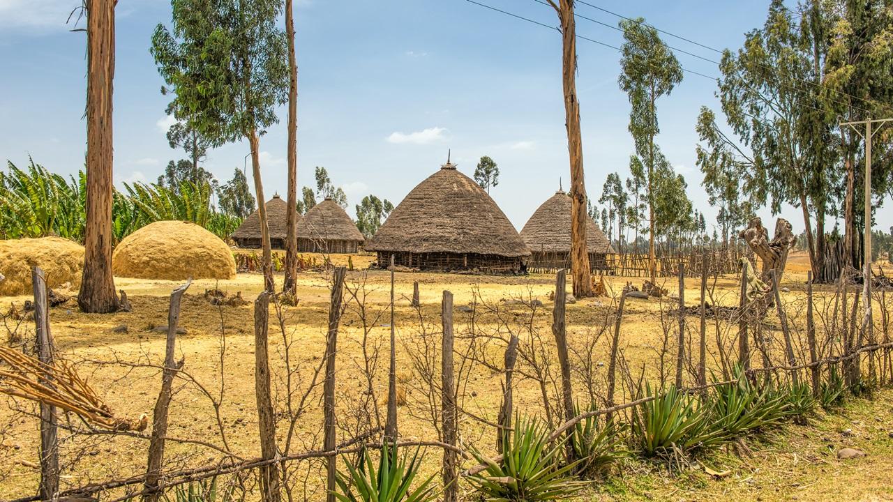 Dovolená Etiopie | © Miroslav Liska | Dreamstime.com