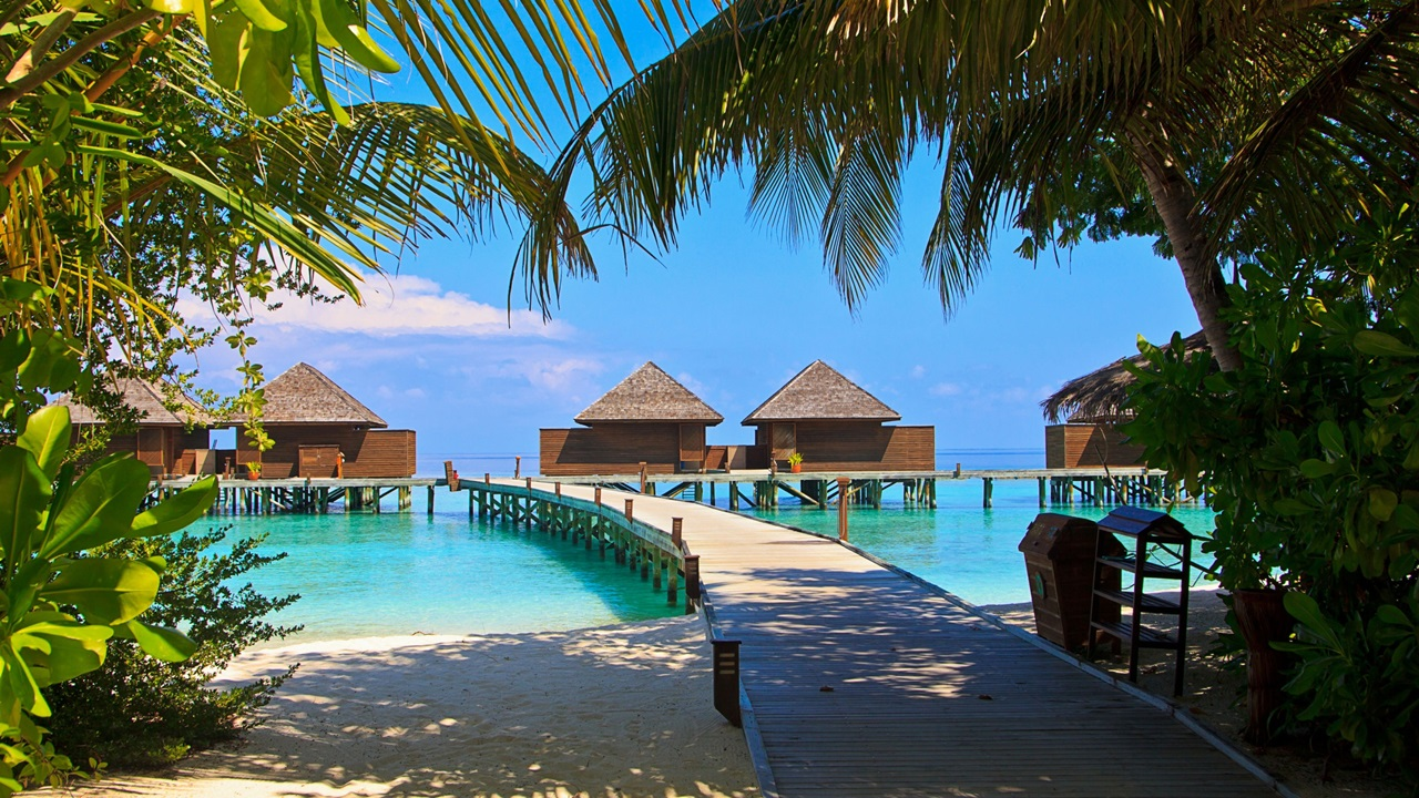 Dovolená Maledivy | © Pixabay.com