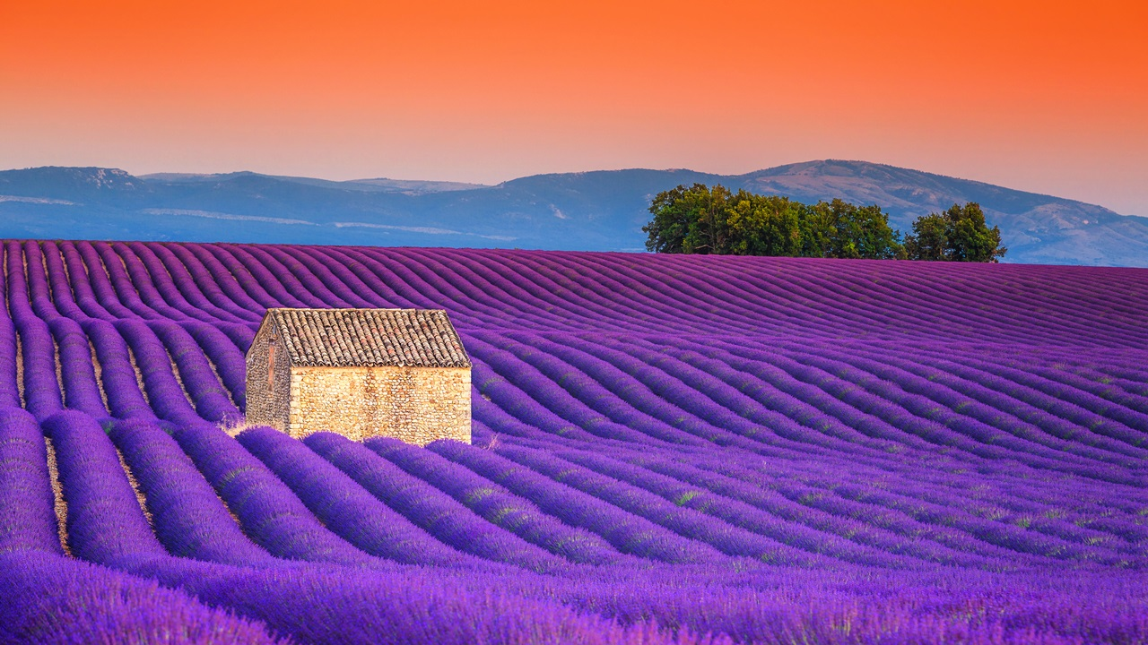 Dovolená Provence | © Janos Gaspar | Dreamstime.com