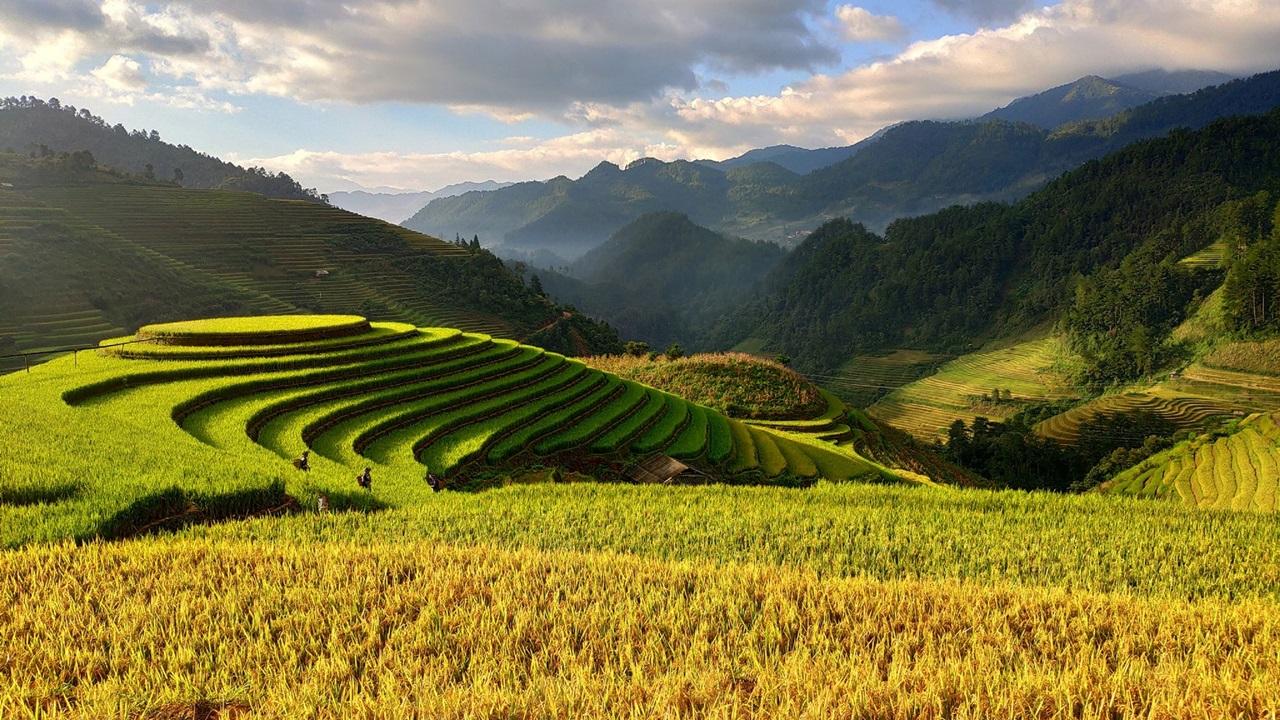 Dovolená Vietnam   © Pixabay.com