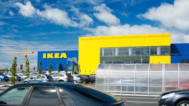 Ikea: Také vroce 2015 si můžete koupit vánoční stromeček za 249Kč