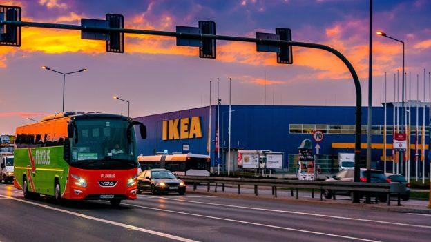 IKEA: Vánoční stromky za 249Kč vprosinci 2017 kdostání vPraze, Brně iOstravě