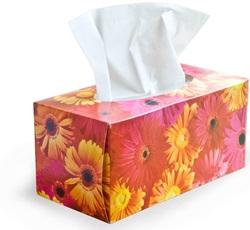Jak léčit nachlazení