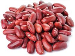 Jak naklíčit fazole adzuki