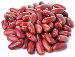 Jak naklíčit fazole