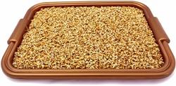Jak naklíčit pšenici