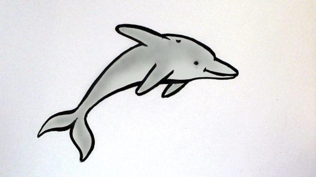 Jak nakreslit delfína