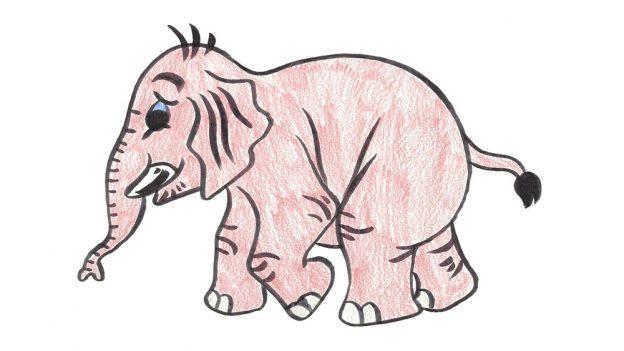 Jak nakreslit slona