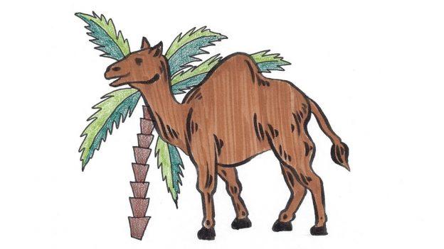 Jak nakreslit velblouda