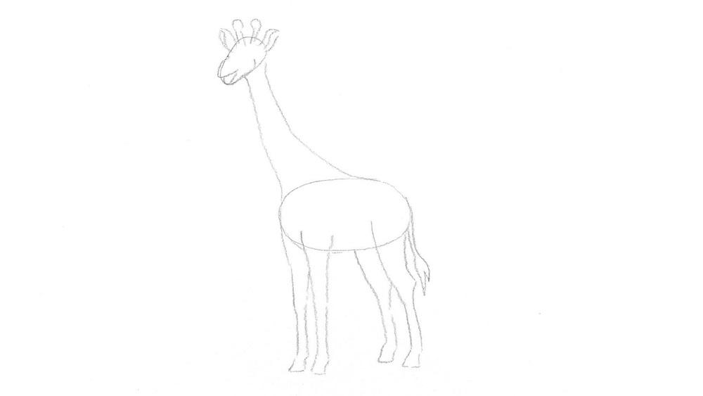 Jak nakreslit žirafu