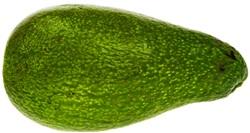 Jak pěstovat avokádo