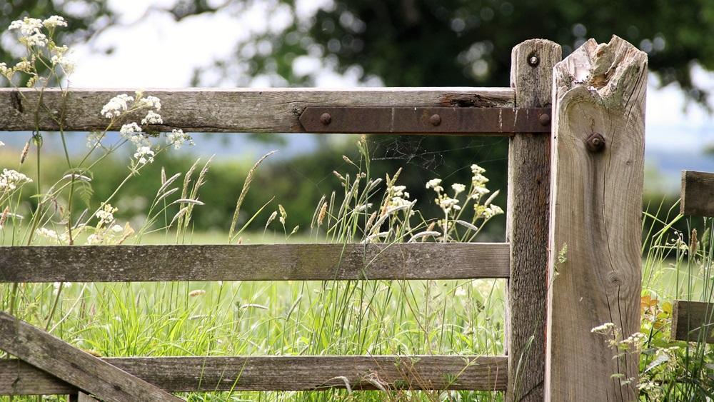 Jak postavit plot