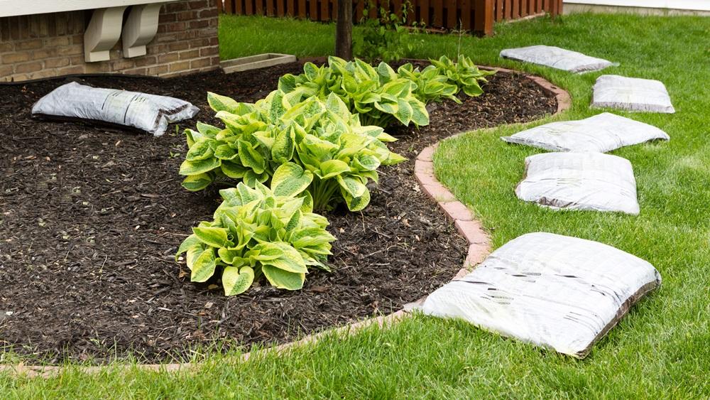 Jak připravit zahradu na jaro