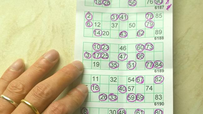 Jak se hraje bingo