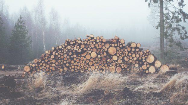 Jak se počítá kubík dřeva