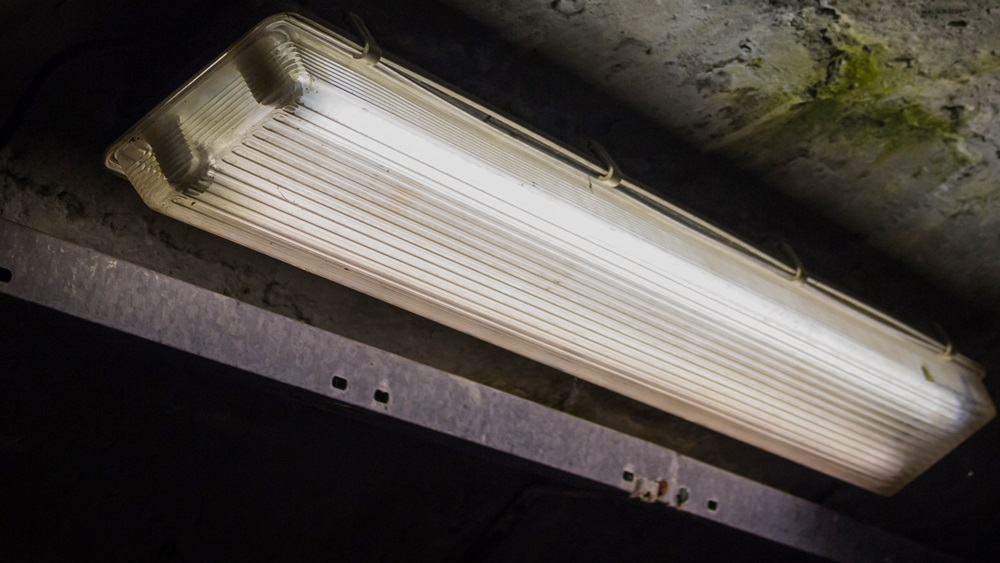 Jak vyměnit zářivku
