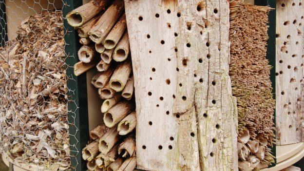 Jak vyrobit hmyzí hotel