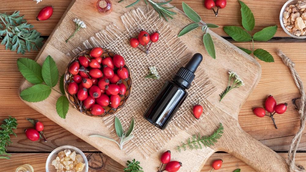 Jak vyrobit šípkový olej