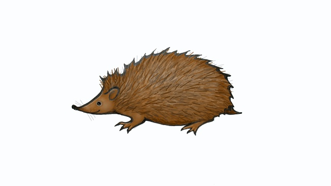 Jak nakreslit ježka