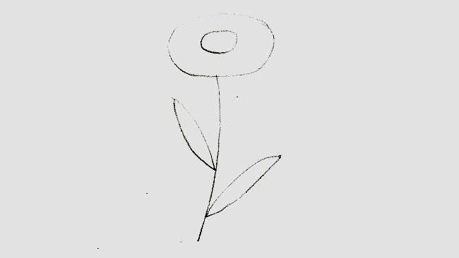 Jak nakreslit kopretinu