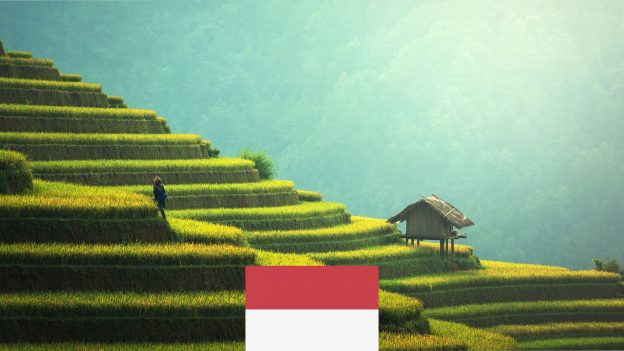 Bali zPrahy od 15990Kč: Akční letenky až do ledna 2022