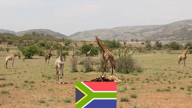 Johannesburg zPrahy za 12490Kč: Akční letenky do konce června 2020