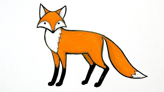 Jak nakreslit lišku