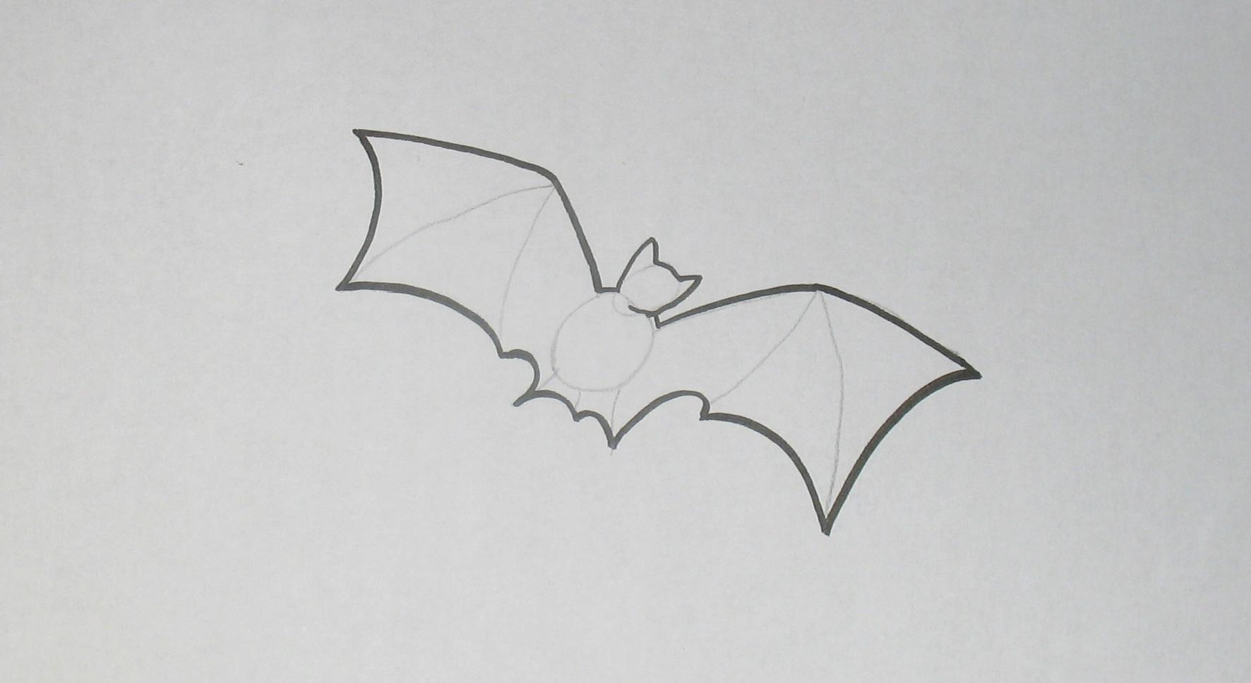 Jak nakreslit netopýra