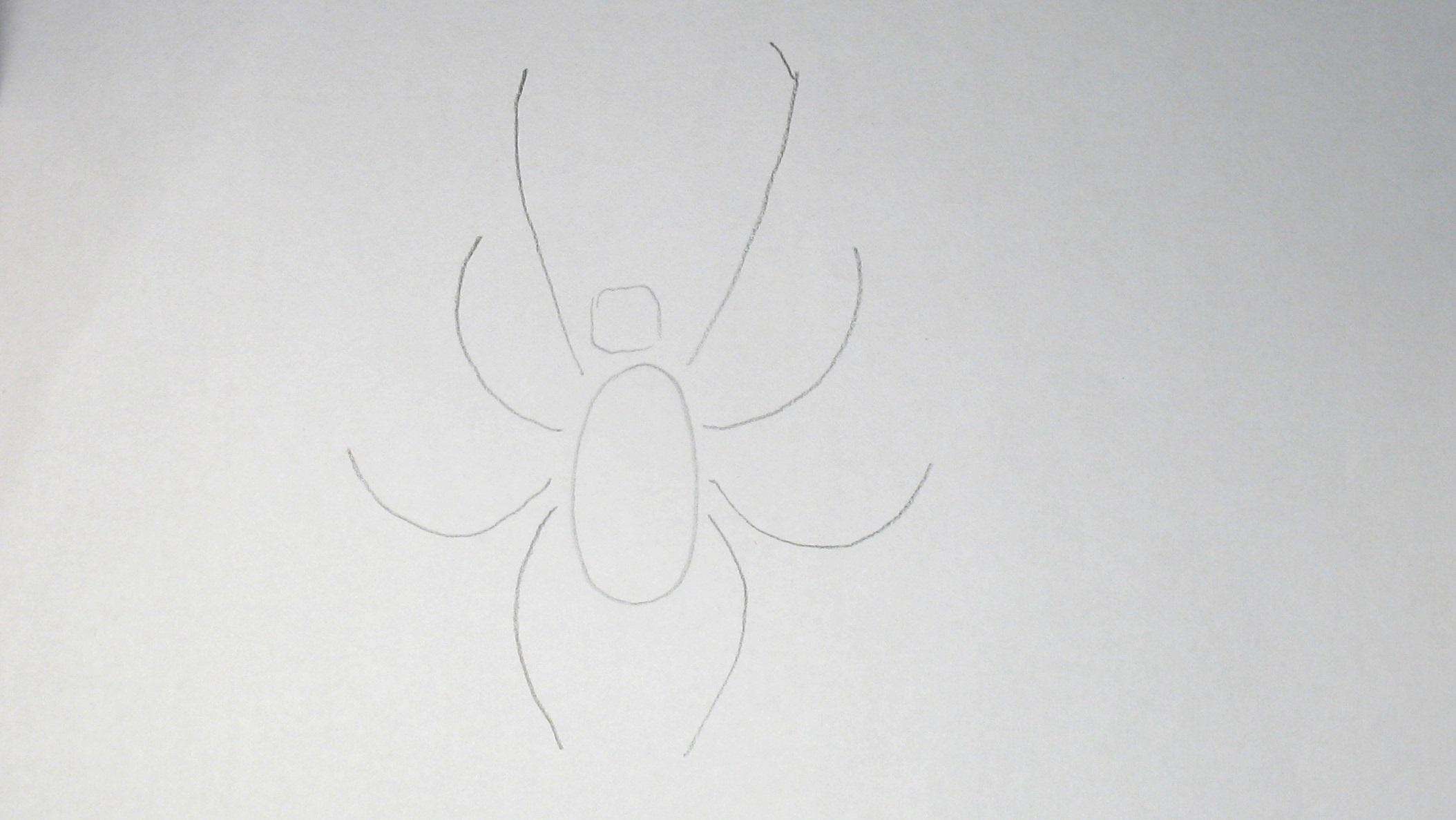 Jak nakreslit pavouka