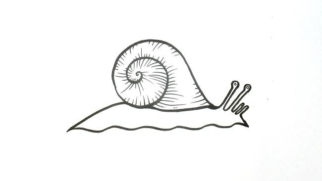Jak nakreslit šneka