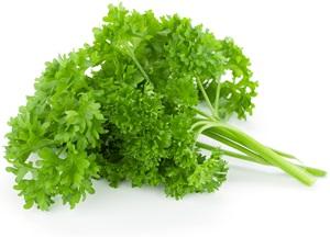 Petržel: Pěstování, účinky, použití