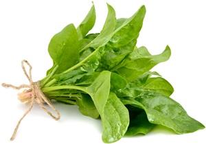 Špenát: Pěstování, účinky, použití