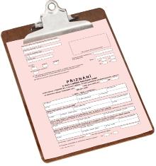 Přiznání kdani zpříjmů fyzických osob 2020/2021: Průvodce, formulář, rady