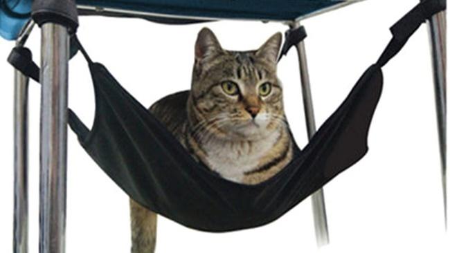 Tipy z Aliexpressu: 10 tipů na levné doplňky pro kočky