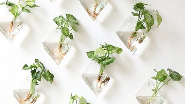 Tipy zAliexpressu: 9 tipů na skleněné vázy anádoby