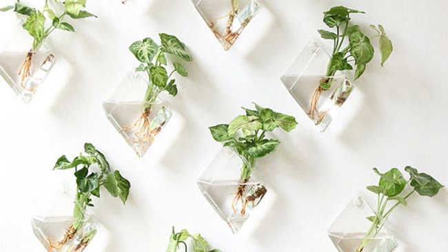 Tipy z Aliexpressu: 9 tipů na skleněné vázy a nádoby