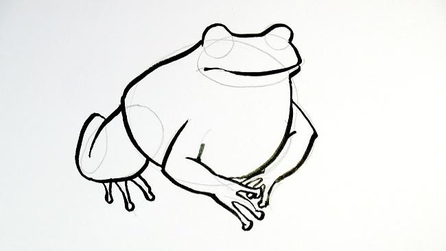 Jak nakreslit žábu